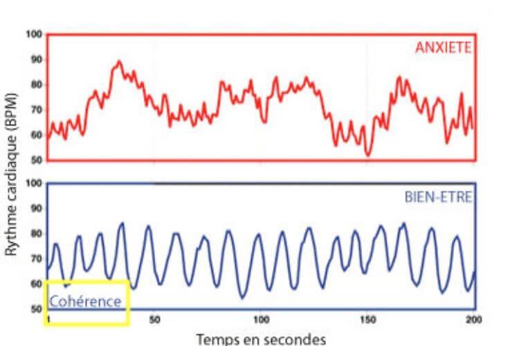 etat-de-coherence-cardiaque-duree-effet-coherence-cardiaque-et-infarctus-coherence-cardiaque-bienfaits-avis